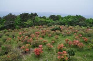 神野山山頂.jpg