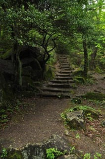 神野山登山道02.jpg