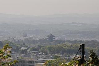 白毫寺から五重塔.jpg