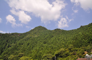 猿谷ダム風景山.jpg